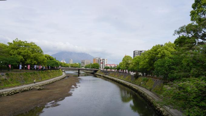 甲突川 桜島