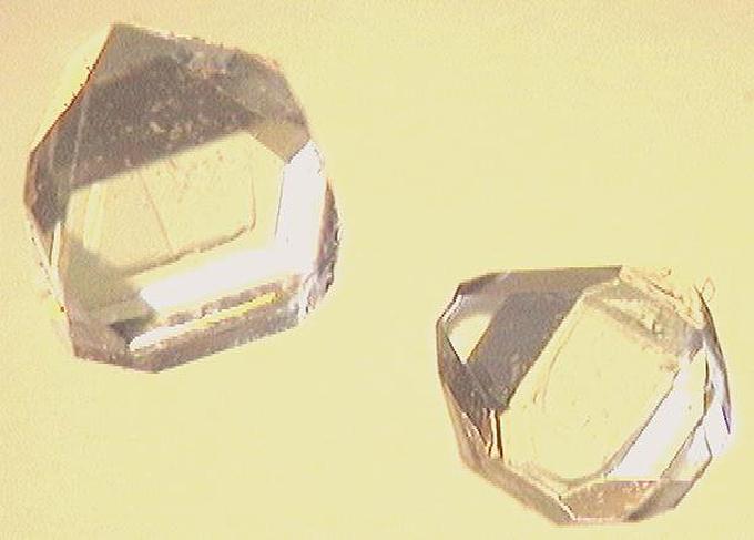 キシリトール 結晶