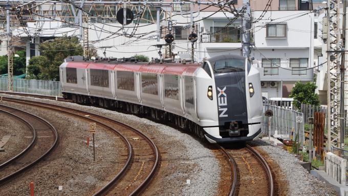 E259系 特急 成田エクスプレス 東海道本線 戸塚~大船間 菜食弁当 NRE