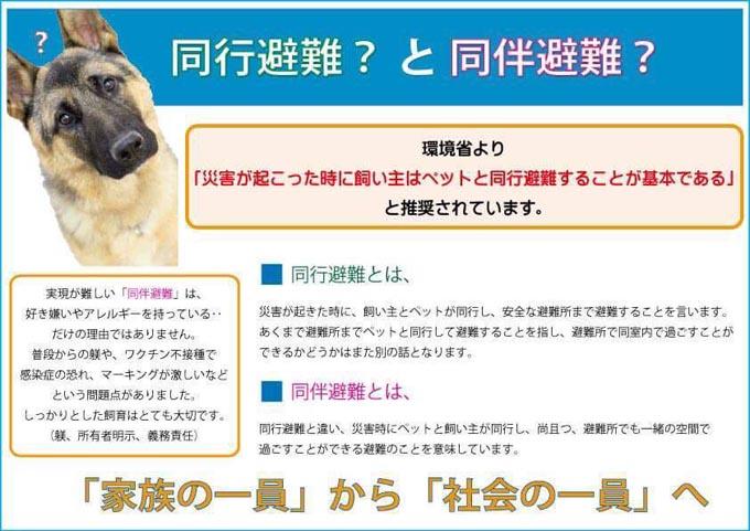 倉敷市内 倉敷 トリミングサロン ペット 被災 西日本豪雨 避難 防災 犬
