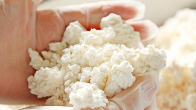 日本で「国菌」に認定された菌~こんなにある麹菌のメリット