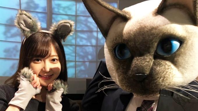 街角ステーション 吉田悠希が「なりきりニャンコ展」をご紹介