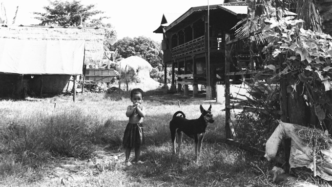貧しくても犬は家族 カンボジアの農村の人と犬のやさしい関係