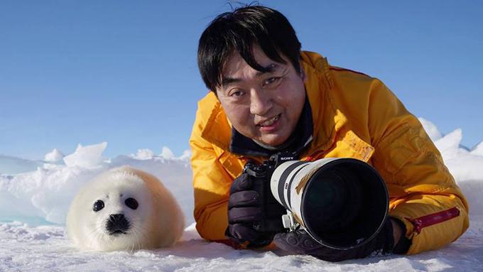 動物写真家・小原玲さん~報道業界を経てアザラシを撮り始めた理由