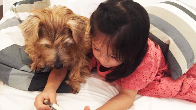 犬が怖かった少女の変化~「撫でてもいい? あったかいね」