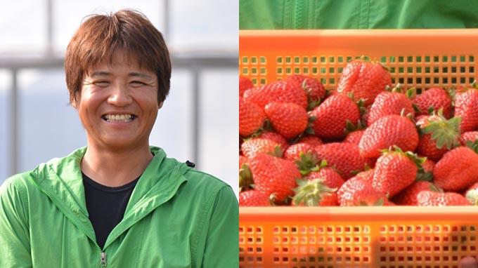 42歳で農業の道へ~独自の工夫でイチゴ農園を営む男性のストーリー