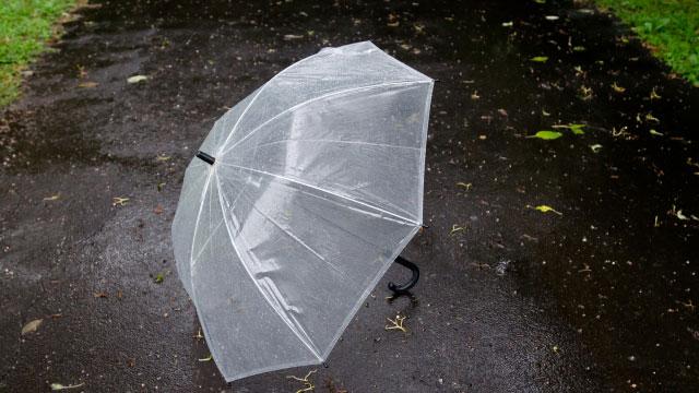 原田龍二は雨でも傘を持つのが嫌い!?