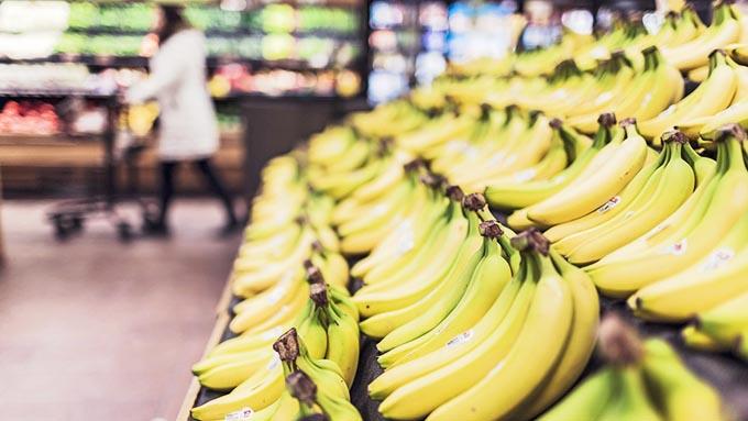 「バナナの木」という表現は間違い?~正しくは「バナナの草」