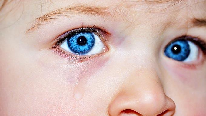 涙は血液の一種~なぜ透明な色になるのか?