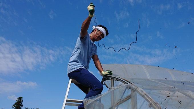 原田龍二、台風15号で倒壊したビニールハウス撤去作業をお手伝い