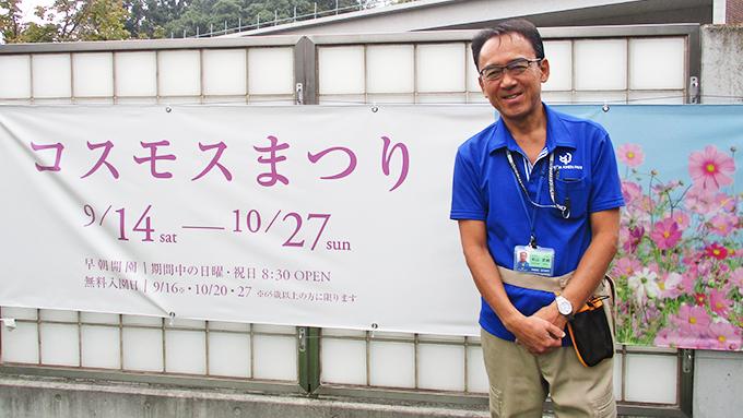 台風15号で倒れたコスモスが奇跡的に回復!「コスモスまつり」