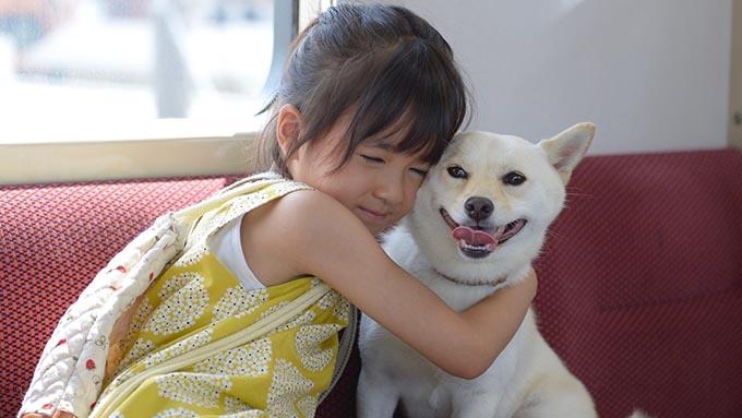元野犬が映画で名演! 主役の少女と犬は18ヵ月同居し真の絆を育む~『駅までの道をおしえて』