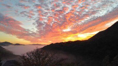 観音温泉の雲海